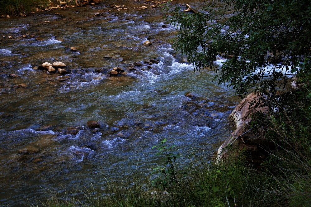 virging-river-2