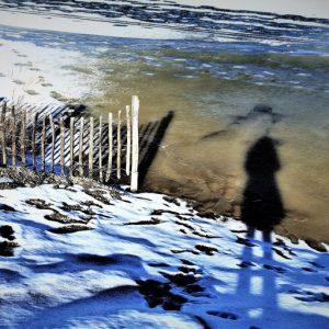 cropped-cropped-diespringerin1.jpg